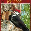 Manitoba Wild $18.99