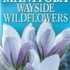 Manitoba Wayside Wildflowers $16.95