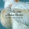 Pelicans to Polar Bears $14.95